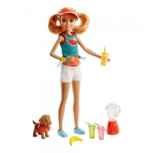 Barbie Sisters Stacie Doll and Smoothie Accessory Set