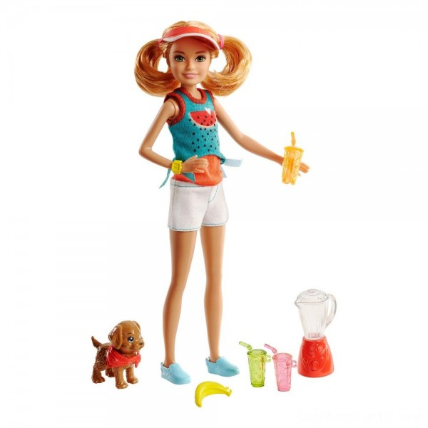 Black Friday - Barbie Sisters Stacie Doll and Smoothie Accessory Set